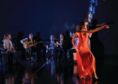 flamenco_psiff